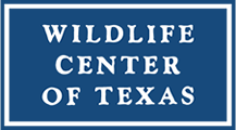 Wildlife Center of Texas