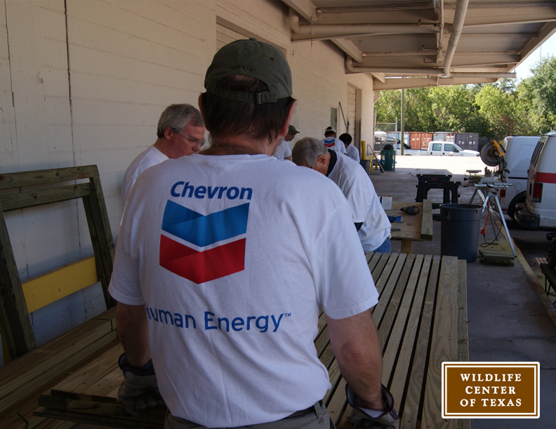 Chevron Photo 2
